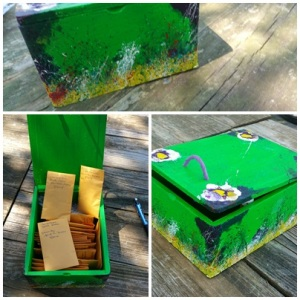 Alice's Seed Box for Essay Contest